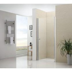 Распашная душевая дверь RGW LE- 01 прозрачное