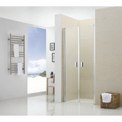 Распашные душевые двери RGW LE- 05 прозрачное