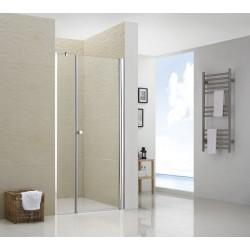 Распашная душевая дверь RGW LE- 02 прозрачное