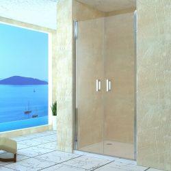 Распашные маятниковая душевая дверь RGW LE- 06